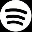 Spotify boys